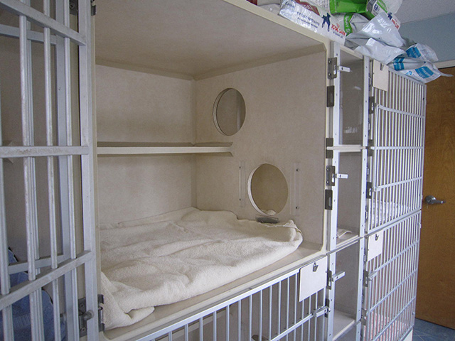 Separate Cat Condos - Mobile Veterinary Clinic